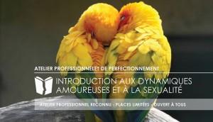 Atelier Introduction aux dynamiques amoureuses et a la sexualité